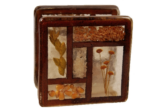 dried flower lucite vintage napkin holder